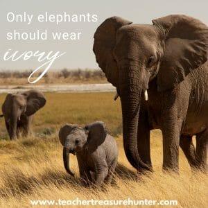 Elephant Appreciation Day Conservation